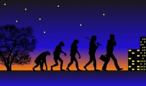 Night_Time_Evolution_Pic_2527592_s